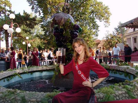 Fontana vina simbol Župske berbe