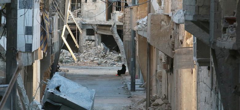 Trwa ofensywa sił rządowych w Aleppo; zaatakowano dwa duże szpitale