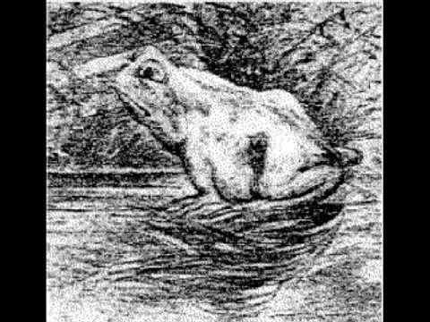 Resultado de imagem para ilusiones opticas rana caballo