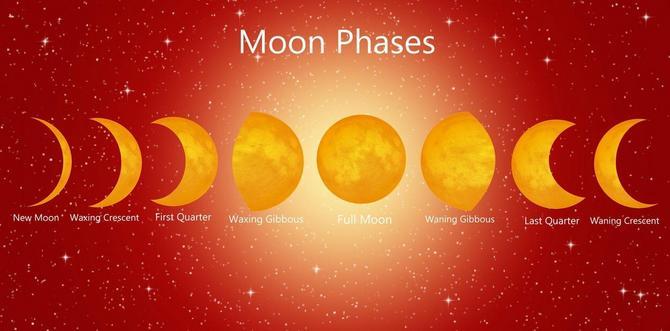 Desna strana slike (poslednja tri prikaza) predstavlja opadajući Mesec