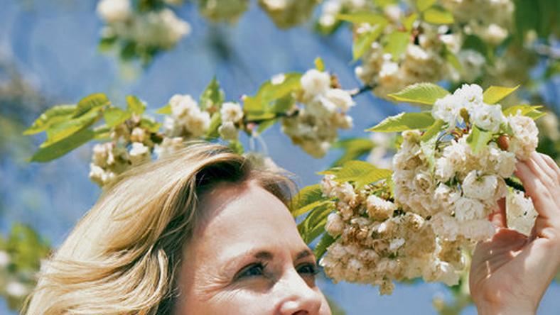 Ismét virágoznak a gyümölcsfák  szép ősz vár ránk - Blikk.hu 6697d36dc3
