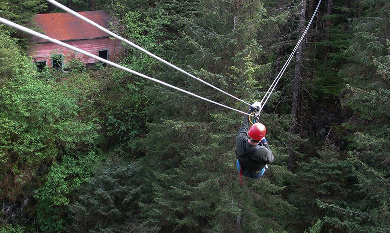 Ziplining (Alaska Shore Tours)