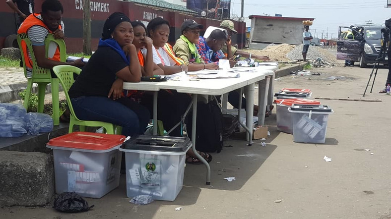 Low turnout of voters was the definitive tale of the 2019 general elections (Punch)