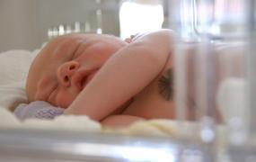 ... Zseniális dolgot találtak ki az inkubátorba került újszülöttek  családjainak 3b1d294a21