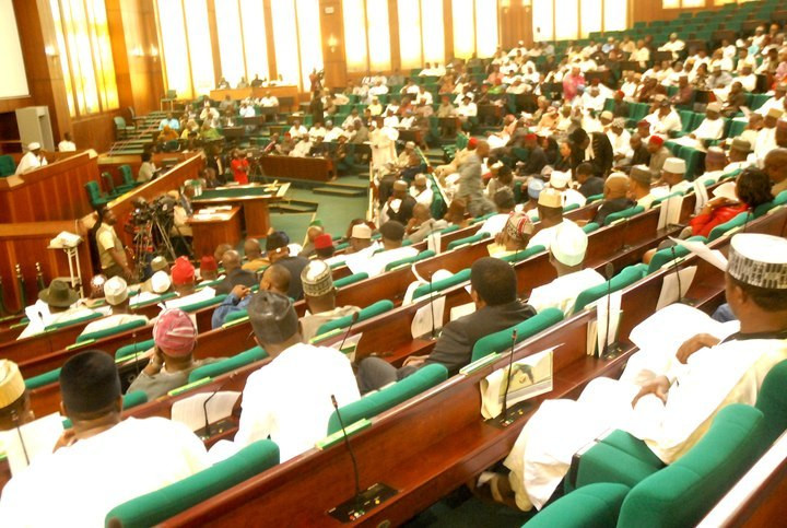 The House of Reps at plenary (NASS media)