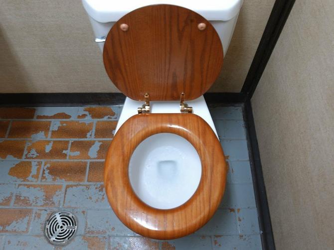 Čučite nad šoljom u javnom toaletu da biste izbegli bakterije i bolesti? Baš zbog toga izlažete se OVOJ INFEKCIJI