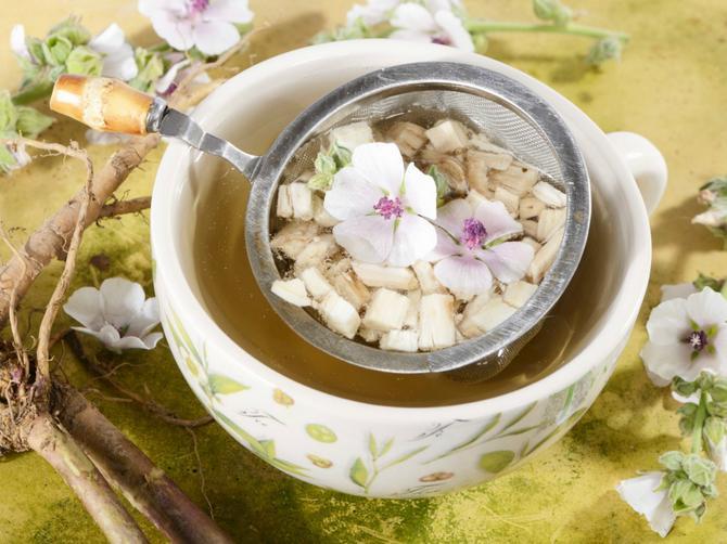 5 čajeva nakon kojih je glavobolja prošlost