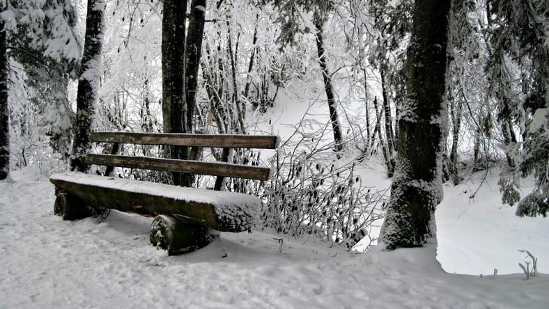 Felkészülni, jön a hó! Mutatjuk, mikor kerülhet elő a szánkó