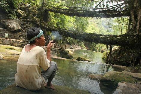 Mostovi od korenja u Čerapundžiju