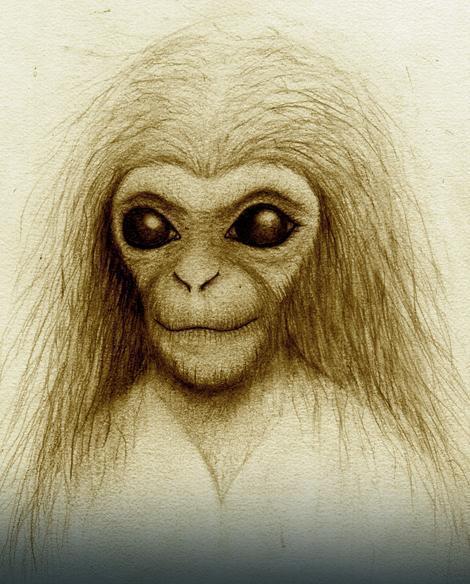 Hibrid čoveka i majmuna