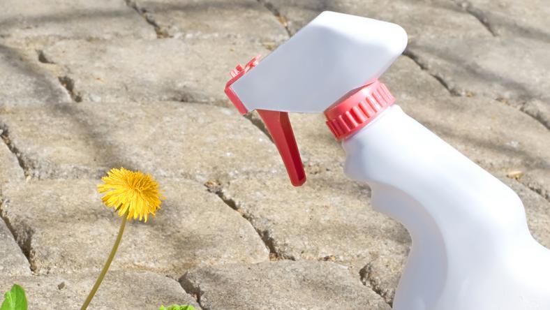 Ellepték a kertjét a gazok  Így szabadulhat meg tőlük! - Blikk.hu 36b8bba034