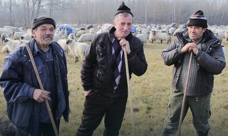 Nomadi sa Vlašića u okolini Laktaša