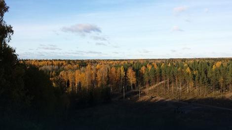 Osim malo surovije klime, o osnovnom životnim potrebama Finci uglavnom ne brinu