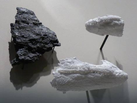 Fosilni ostaci Malene