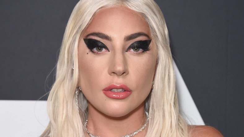 Lady Gaga and fan fall off stage during Las Vegas show