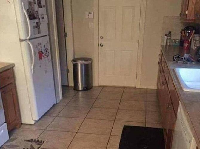 Ova slika IZLUĐUJE sve na Fejsbuku: Možete li vi na njoj da pronađete psa?