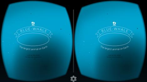 Plavi kit