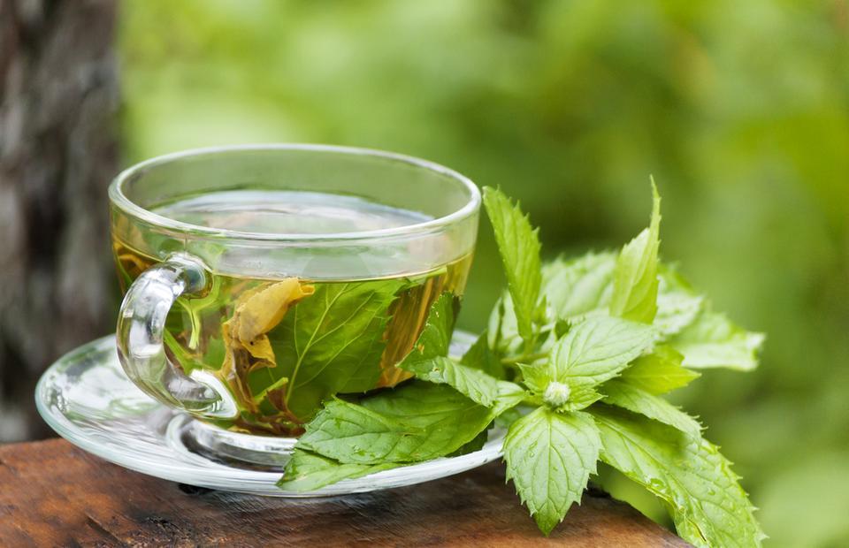 Как мятный чай влияет на мужскую потенцию