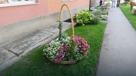 ZA ZELENIJI BEOGRAD Nagrađeni vlasnici najlepših bašti, balkona, dvorišta...
