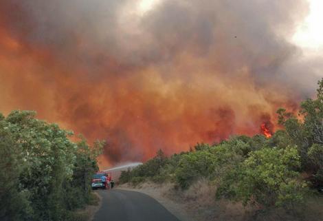 Bukti nekoliko požara na poluostrvu Luštica (Foto: Radio Jadran/S. Kosić)
