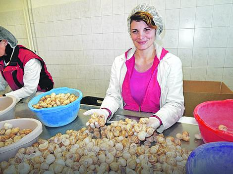 Oduševljena uslovima na poslu: Radnica Snežana Ilić (27)