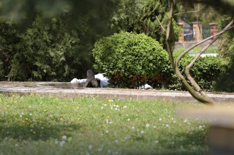 Nakon krvavog pira ubio se u dvorištu crkve
