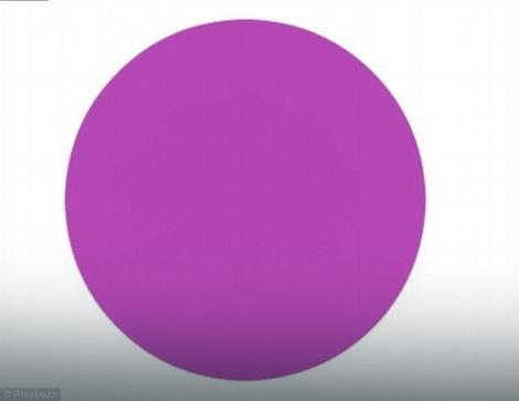 ciklama krug