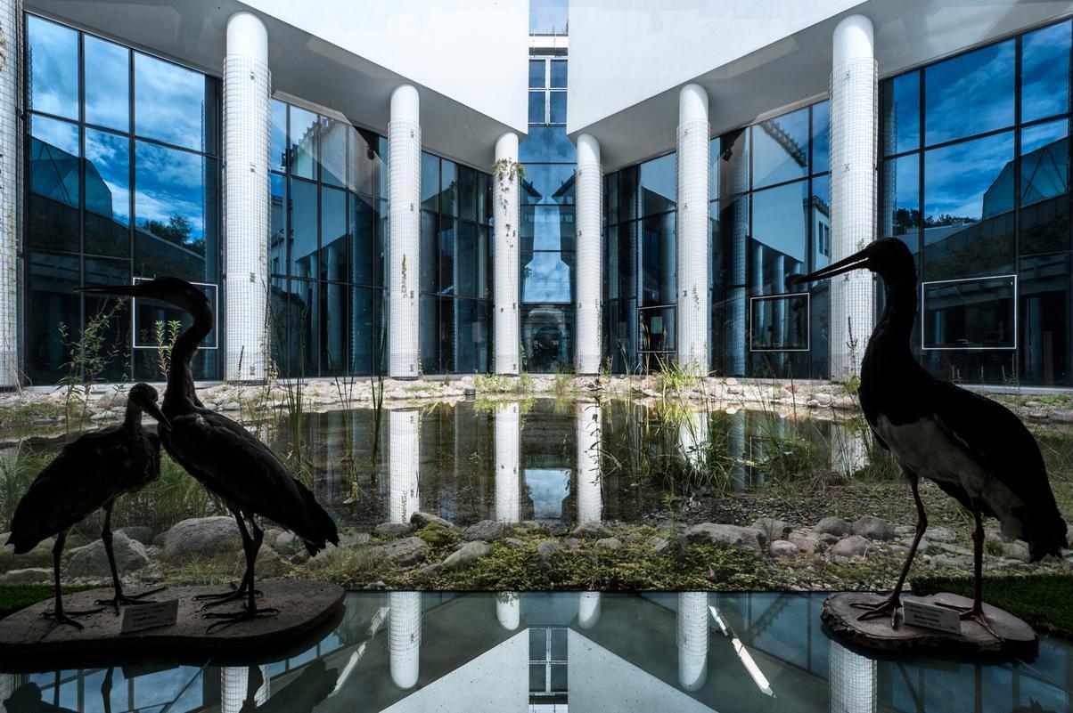 Fot. Materiały prasowe Uniwersytetu w Białymstoku