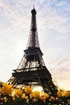 we Francji