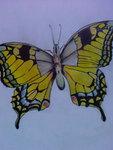 Motyl-Paź Królowej-kredki i cienkopis