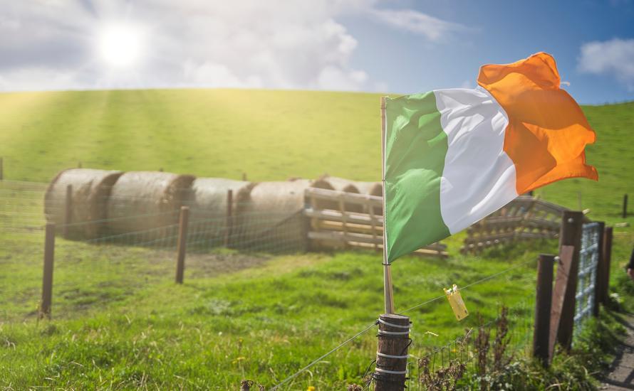 Maidin mhaith, czyli dzień dobry po irlandzku