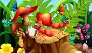 Gra: Hidden Object Insects