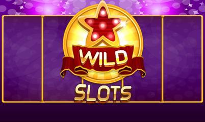 Gra: Wild Slot