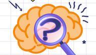 Gra: Braindom