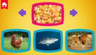 Spiel: What do animals eat