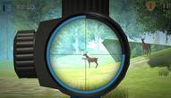 Jeu: Hunter Training