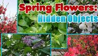 Gra: Spring Flowers Hidden Objects