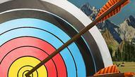 Gra: Archery Training