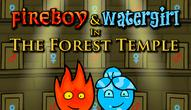 Gra: Fireboy and Watergirl Forest Temple