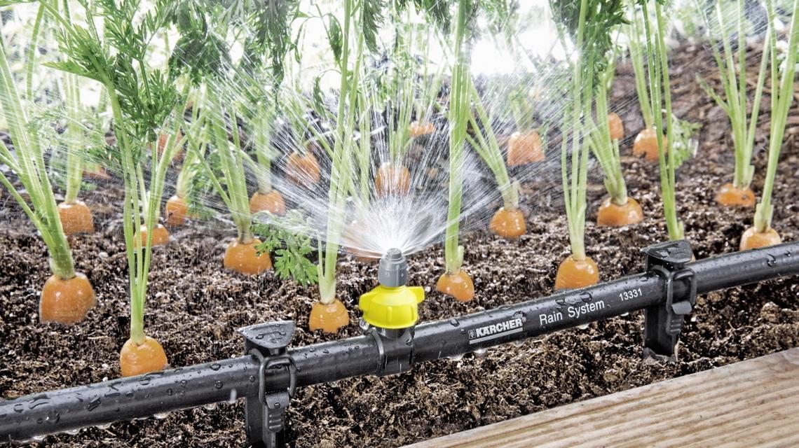 Kärcher Rain System samodzielnie zadba o Twój ogród