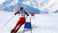 Game: Slalom Ski Simulator