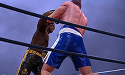 Gra: Ultimate Boxing Game