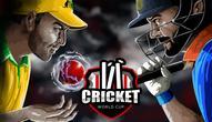 Gra: Cricket World Cup
