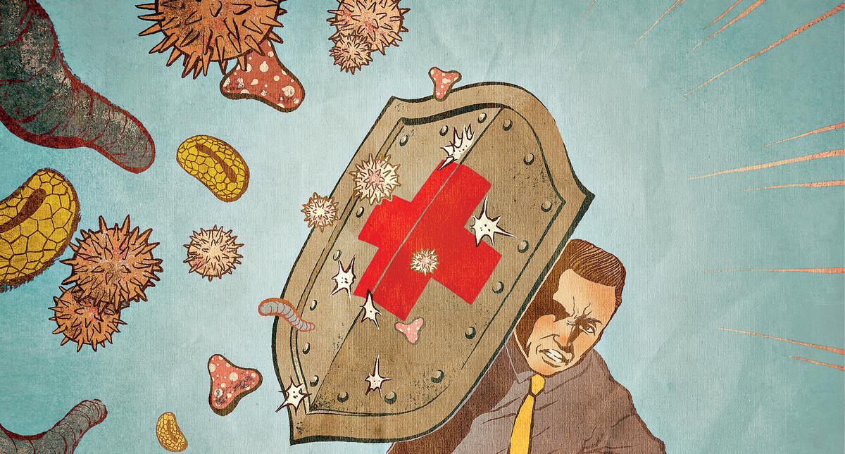Szczepionki są tarczą przed chorobami.