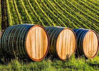 Palcem w mapę: Winnice