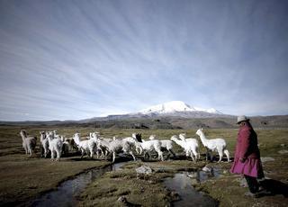 Sekret świętej góry Coropuna