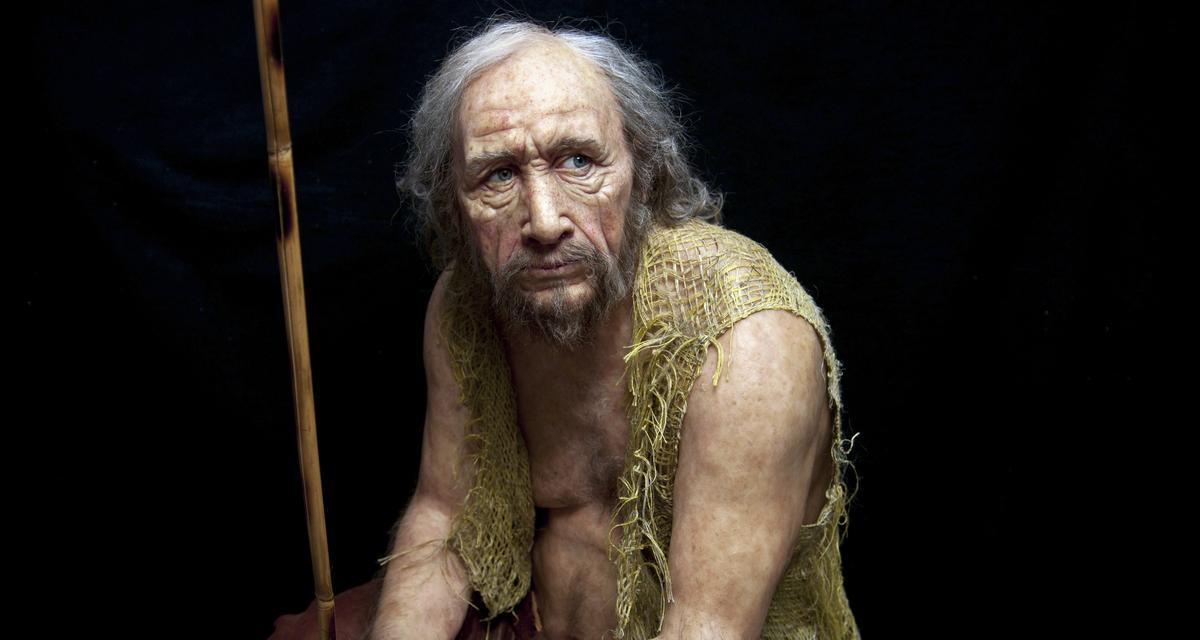 Polaków portret genetyczny