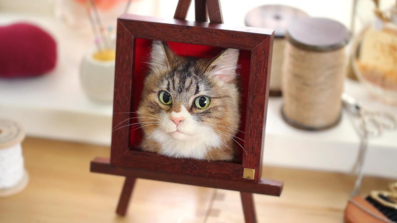 Du kannst jetzt den Kopf deiner Katze einrahmen lassen