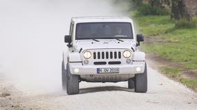 Jeep Wrangler kontra Land Rover Defender - słodki i kwaśny