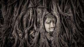 Zrujnowane świątynie i zapomniane miejsca. Oto wyniki Historic Photographer of the Year